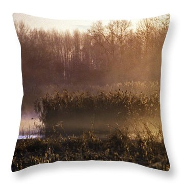Morning Light Throw Pillow by Skip Willits