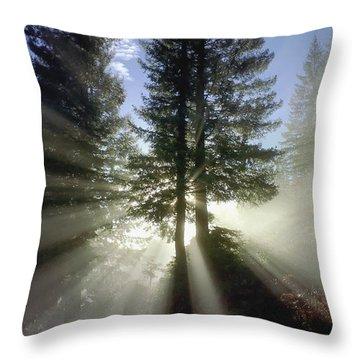 Morning Love Throw Pillow by Daniel Furon