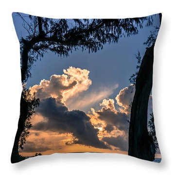 Morning Love Throw Pillow