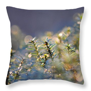 Morning Magic Throw Pillow