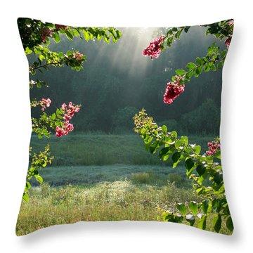 Morning Marsh Throw Pillow by Carol Groenen