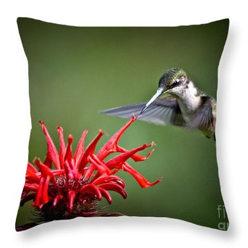 Morning Meal Throw Pillow by Cheryl Baxter