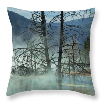 Morning Mist At Mammoth Hot Springs Throw Pillow by Sandra Bronstein