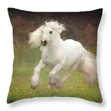 Morning Mist C Throw Pillow by Fran J Scott
