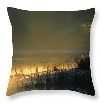 Morning Mist Throw Pillow by Dianne Cowen