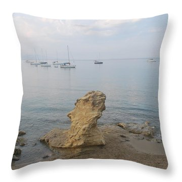 Throw Pillow featuring the photograph Morning Mist 2 by George Katechis