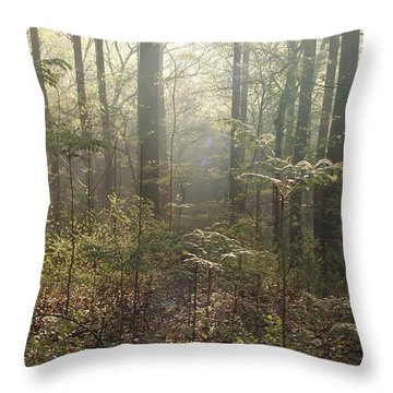 Morning Mist In The Forest Throw Pillow by Bill Cannon