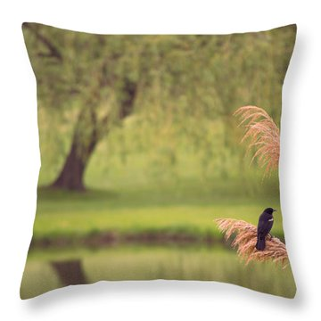 Throw Pillow featuring the photograph Morning Mood by Rima Biswas