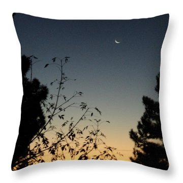 Morning Moonshine Throw Pillow by Carla Carson