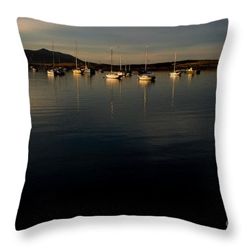 Throw Pillow featuring the photograph Morning On The Bay by Terry Garvin