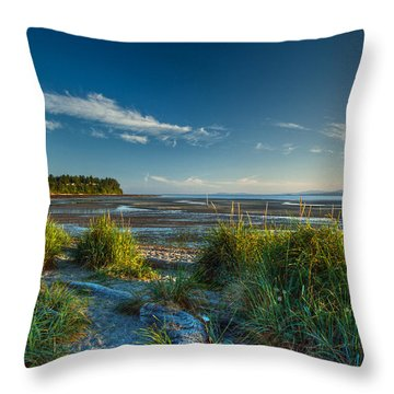 Morning On The Beach Throw Pillow by Randy Hall