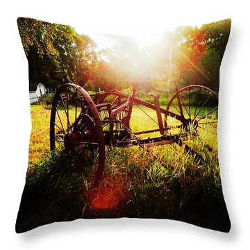 Morning On The Farm Throw Pillow by Zinvolle Art