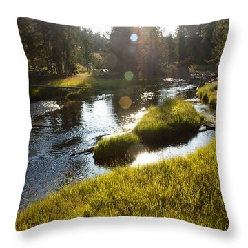 Morning On The Firehole Throw Pillow