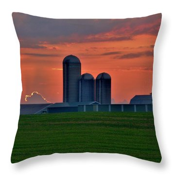 Morning Promise Throw Pillow by Robert Geary
