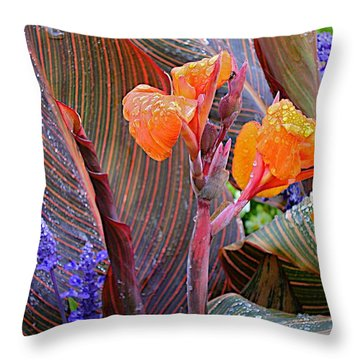 Throw Pillow featuring the photograph Morning Rain by Joseph Yarbrough