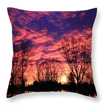 Morning Reflection Throw Pillow