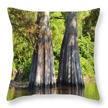 Morning Reflection Throw Pillow by Maggy Marsh