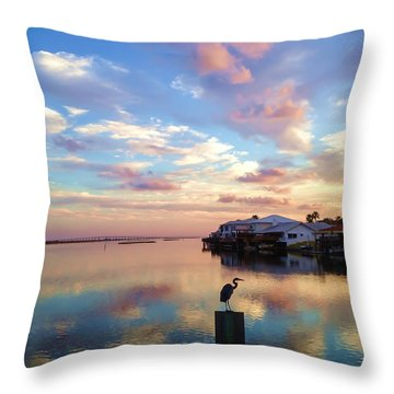 Morning Reflections Throw Pillow