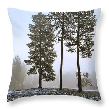 Morning Rime Throw Pillow