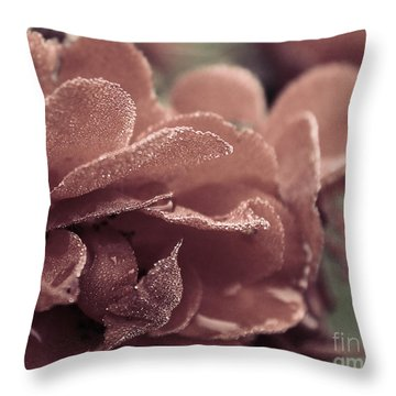 Morning Rose Throw Pillow