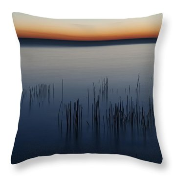 Morning Throw Pillow by Scott Norris