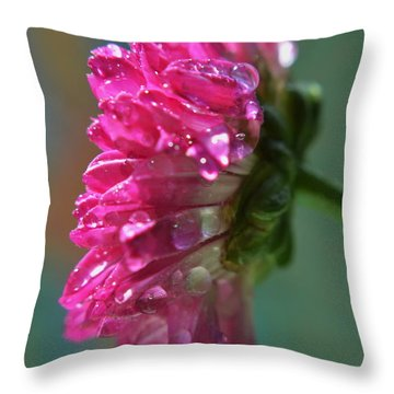 Throw Pillow featuring the photograph Morning Shower by Michelle Meenawong