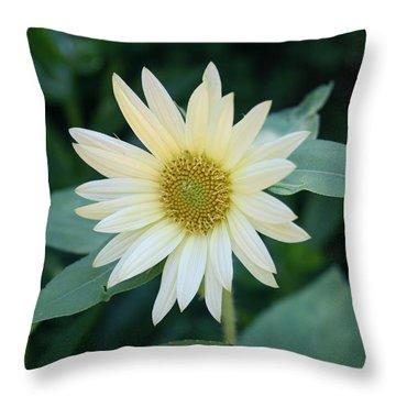 Morning Smile Throw Pillow by Kathleen Scanlan