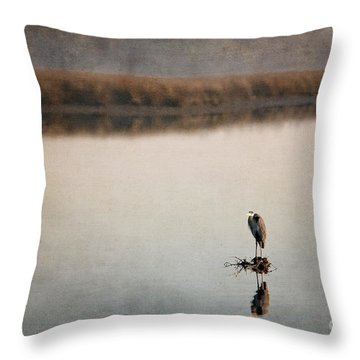 Morning Solitude Throw Pillow by Joan McCool