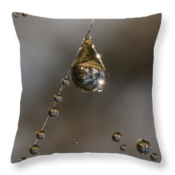 Morning Spider Web Dew Throw Pillow by David Lester