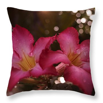 Throw Pillow featuring the photograph Morning Sunshine And Rain by Miguel Winterpacht