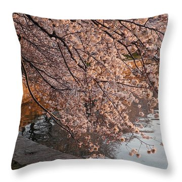Morning Sunshine In A Pond Throw Pillow by Yue Wang