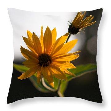 Morning Sunshine Throw Pillow