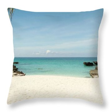 Morning Swim Throw Pillow by Amar Sheow