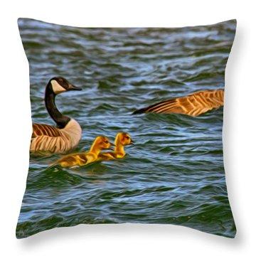 Morning Swim Throw Pillow by Omaste Witkowski