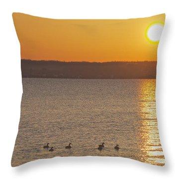 Morning Swim Throw Pillow by William Norton