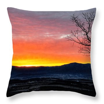 Throw Pillow featuring the photograph Morning Tangerine Glow by Lara Ellis