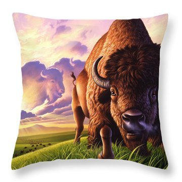 Morning Thunder Throw Pillow by Jerry LoFaro