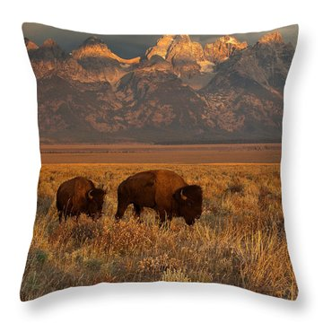 Morning Travels In Grand Teton Throw Pillow