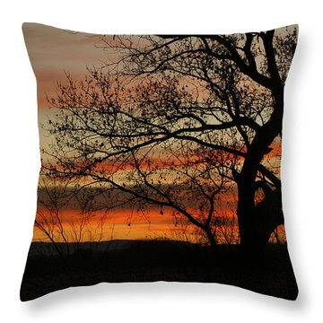 Morning View In Bosque Throw Pillow by James Gay