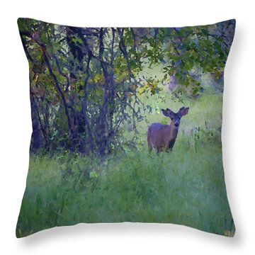 Throw Pillow featuring the photograph Morning Visitor by Sherri Meyer
