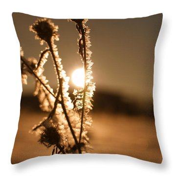 Throw Pillow featuring the photograph Morning Walk by Miguel Winterpacht