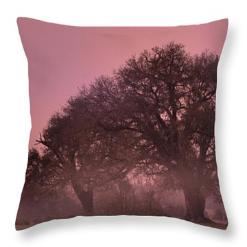 Morning Whispers In Mississippi Throw Pillow