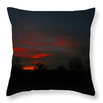 Mornings Early Light 012913 Throw Pillow by Joyce Dickens