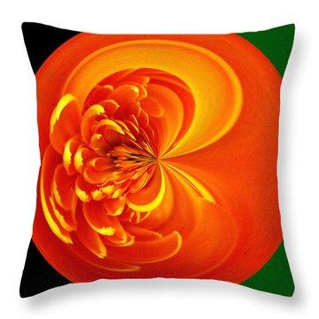 Morphed Art Globe 19 Throw Pillow by Rhonda Barrett