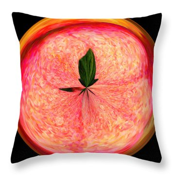 Morphed Art Globe 23 Throw Pillow by Rhonda Barrett