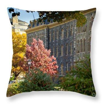 Morrill Hall Cornell University Throw Pillow