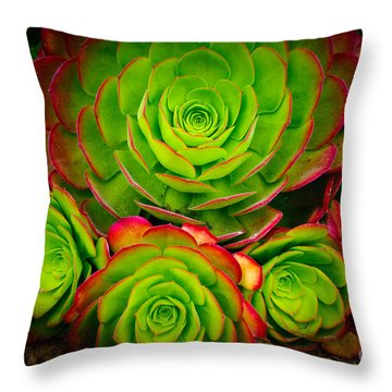 Morro Bay Echeveria Throw Pillow