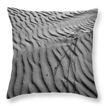 Throw Pillow featuring the photograph Morro Strand Beach Ripples by Terry Garvin