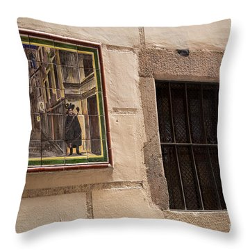 Mosaic Window Throw Pillow by Rene Triay Photography