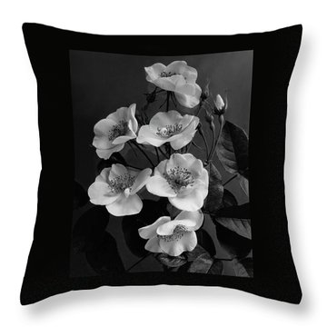 Moschata Alba Throw Pillow